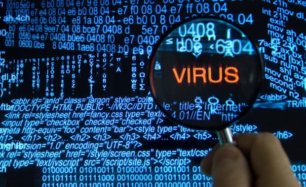Virus computacional